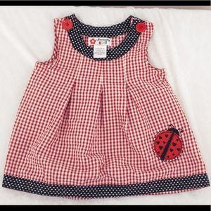 Specialty girl ladybug dress